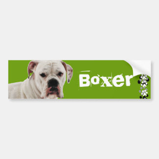 White Boxer Photo Bumper Sticker