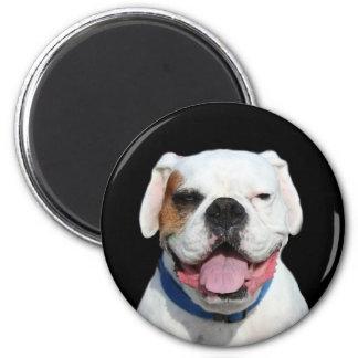 White Boxer round magnet