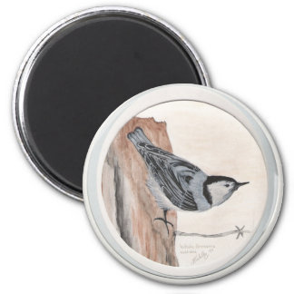 white breasted nuthatch 6 cm round magnet