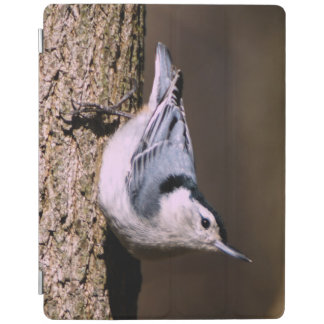White Breasted Nuthatch iPad Smart Cover iPad Cover