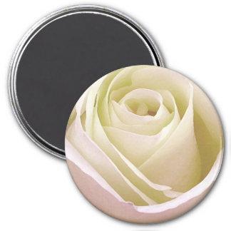 White Bridal Rose Magnet