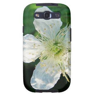 White Brombeerblüte Galaxy SIII Cover