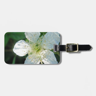 White Brombeerblüte Luggage Tags