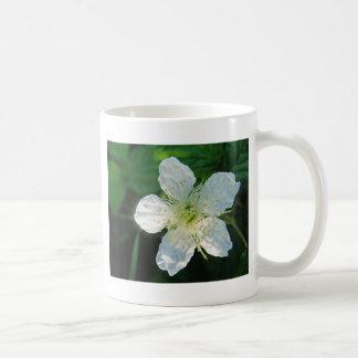 White Brombeerblüte Mug