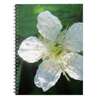 White Brombeerblüte Spiral Notebook