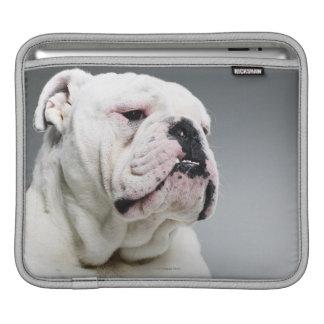 White Bull dog iPad Sleeve