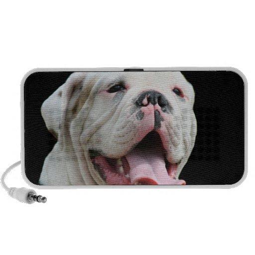 White bulldog doodle speaker
