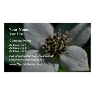White Bunchberry Blossom Closeup flowers Business Cards