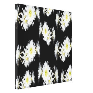 White Cacti Flowers On Black Background, Canvas Print