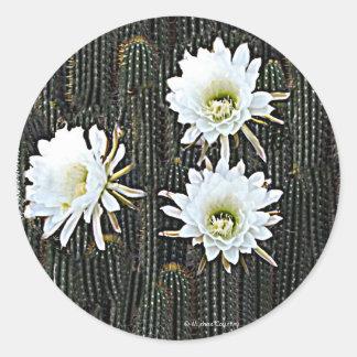 White Cactus Blooms Round Sticker