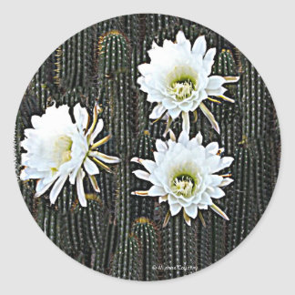 White Cactus Blooms Stickers