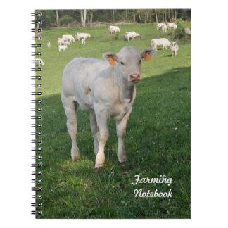 White calf farming notebook