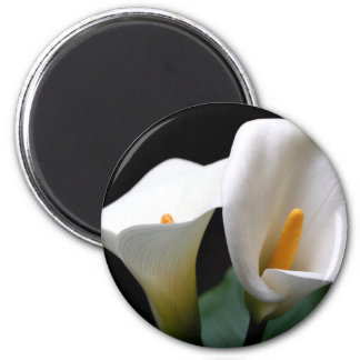 White Calla Lily Flower Round Magnet