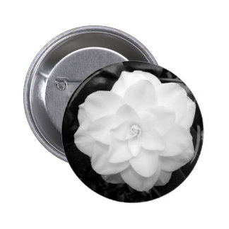 White Camellia 6 Cm Round Badge