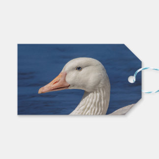 White Canadian Goose Gift Tags