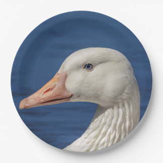 White Canadian Goose Paper Plate