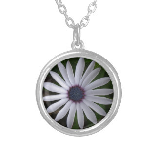 WHITE CAPE DAISY FLOWER SILVER PLATED NECKLACE