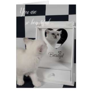 White cat before the mirror card