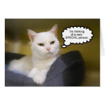 White Cat Brother Birthday Humour Card