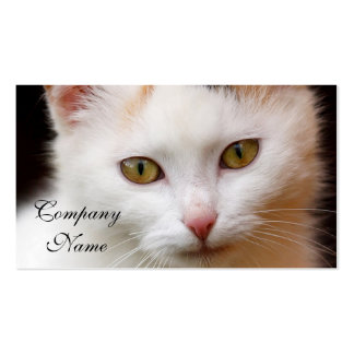 White cat business cards