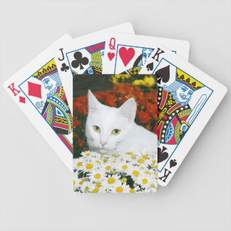 White cat in fall flowers bicycle playing cards