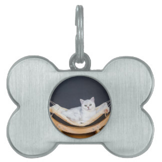 White cat lying lazy in hammock pet ID tag