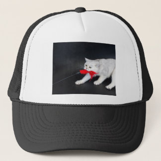 White cat playing pulling red toy trucker hat