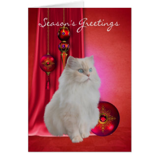 white cat season's greeting card with ornaments