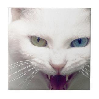 White cat small square tile