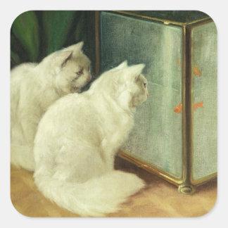 White Cats Watching Goldfish Square Sticker