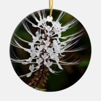 White Cat's Whiskers Flower Christmas Ornament