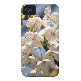 White Cherry bare OM iPhone 4 Case-Mate Case