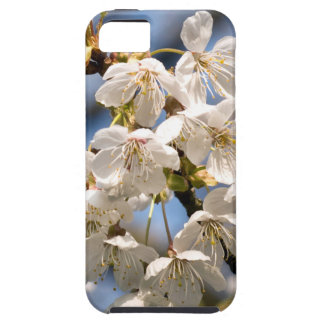 White Cherry bare OM iPhone 5 Cases