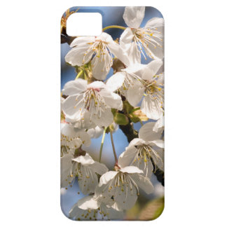 White Cherry bare OM iPhone 5 Cover