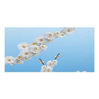 White Cherry Blossom Customised Photo Card