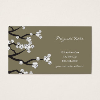 White Cherry Blossoms Sakura Spring Flowers Branch