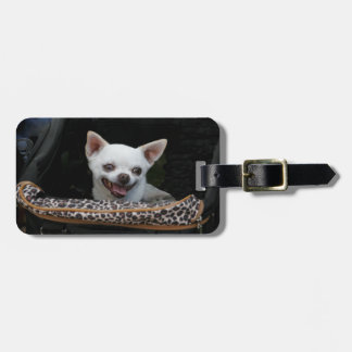 White Chihuahua Luggage Tag