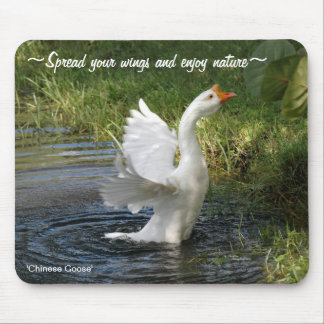 White Chinese Goose flapping wings Mousepad