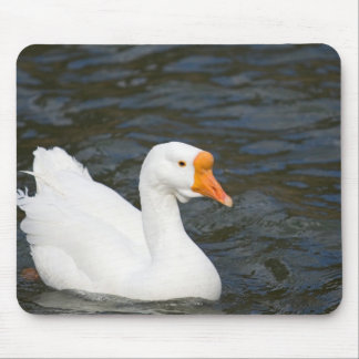 White Chinese Goose Mouse Pads