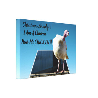 White Christmas Turkey That Thinks He Is A Chicken Canvas Print