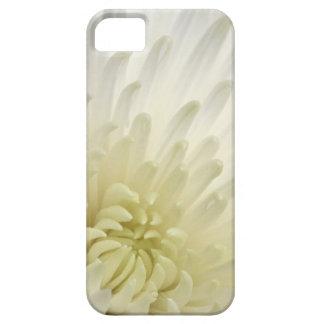 White Chrysanthemum iPhone 5 Covers