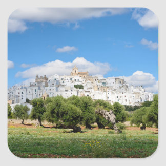 White city Ostuni with olive trees, Puglia sticker
