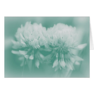 White Clover Wildflowers Cards