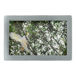 WHITE COCKATOO QUEENSLAND AUSTRALIA RECTANGULAR BELT BUCKLES