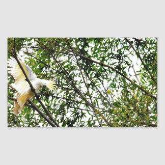 WHITE COCKATOO QUEENSLAND AUSTRALIA RECTANGULAR STICKER