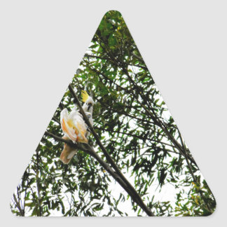 WHITE COCKATOO QUEENSLAND AUSTRALIA TRIANGLE STICKER