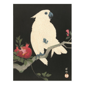 White Cockatoo  Vintage Japanese Fine Art Postcard