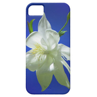 White Columbine on Blue iPhone 5 Cover