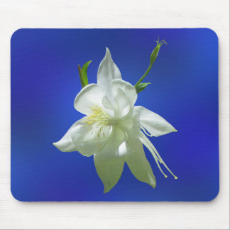White Columbine on Blue Mouse Pad