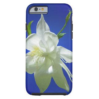 White Columbine on Blue Tough iPhone 6 Case